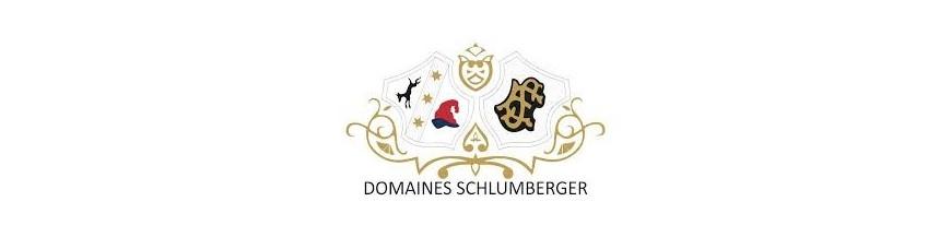 Domains Schlumberger