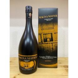 Branca Brandy Magna Mater Stravecchio