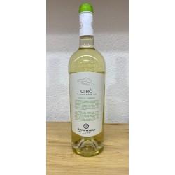 Cirò Bianco doc 2019 Santa Venere