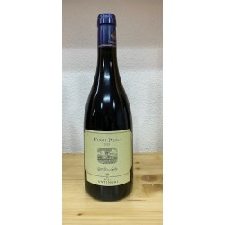 Pinot Nero della Sala Umbria igt 2015 Castello della Sala